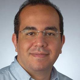 Prof. Ahmed Abdel Meguid